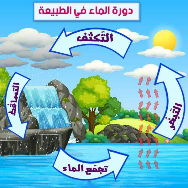 دورة الماء في الطبيعة للأطفال