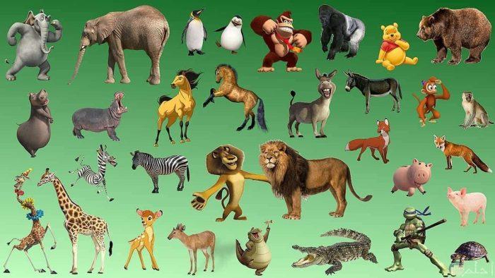أنواع الحيوانات وأسمائها للأطفال
