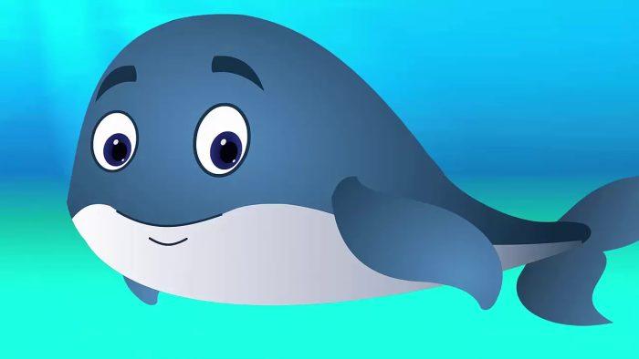 معلومات عن الحوت للأطفال