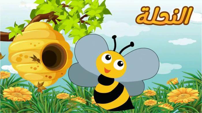 معلومات عن النحل للأطفال