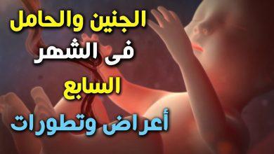 وزن الجنين 1700 في الشهر السابع