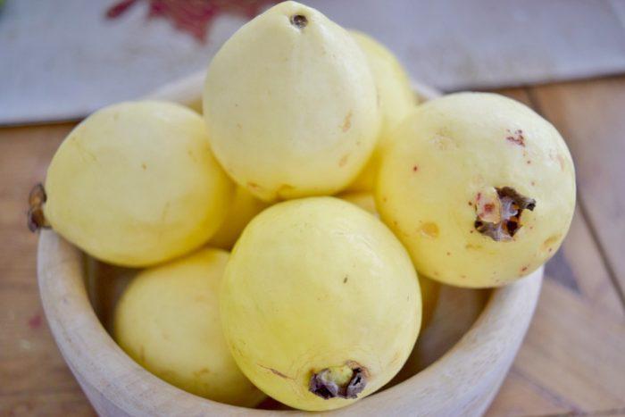 الوحم على الجوافة