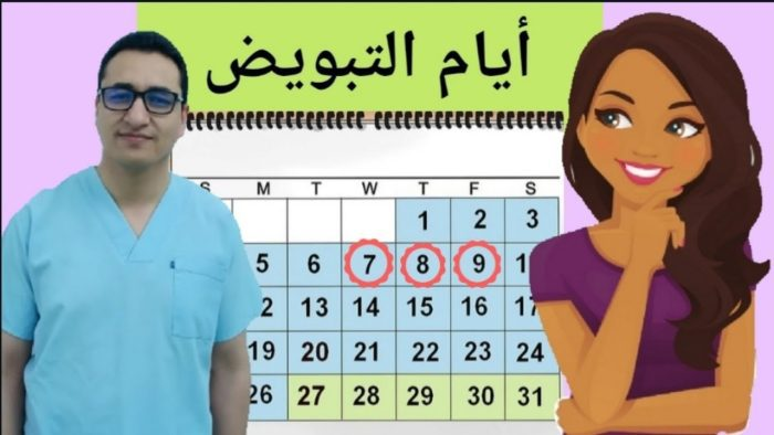 أشياء تساعد على الحمل بعد الدورة الشهرية في أيام التبويض