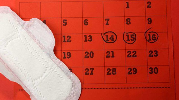 هل يحدث حمل في اليوم 13 من الدورة